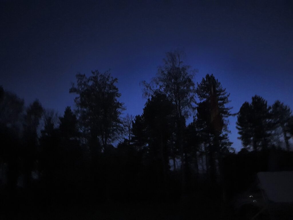 night sky over Stourton Woods
