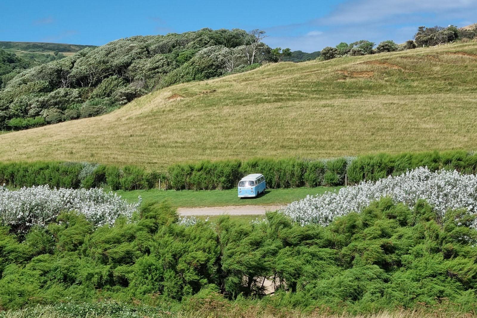 vw campervan in green fields